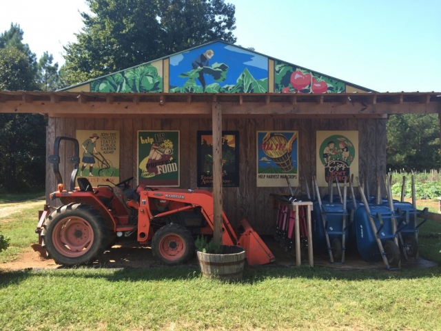 Colorful shed on Shalom Farms